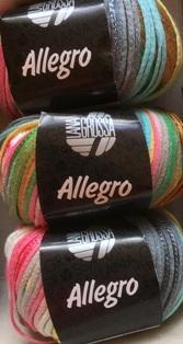 Garnpaket Allegro Fb. 020 400g